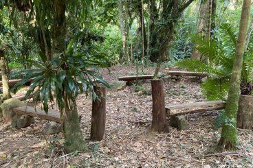 Bosque da Meditação