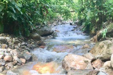 Riacho para Banho